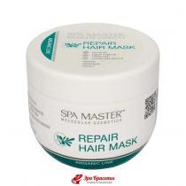 Восстанавливающая маска для волос с аргановым маслом Arganic Line Spa Master, 500 мл
