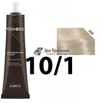 Безаммиачная стойкая краска для волос 10/1 Пепельный натуральный Echoes Premium Subrina, 60 мл