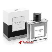 Туалетная вода Art Parfum Privilege Status (аналог Christian Dior Homme Sport), 100 мл