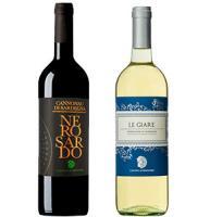 Вино Каннонау и Верментино из Италии в подарок